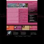 Refonte graphique du site feminimix.com